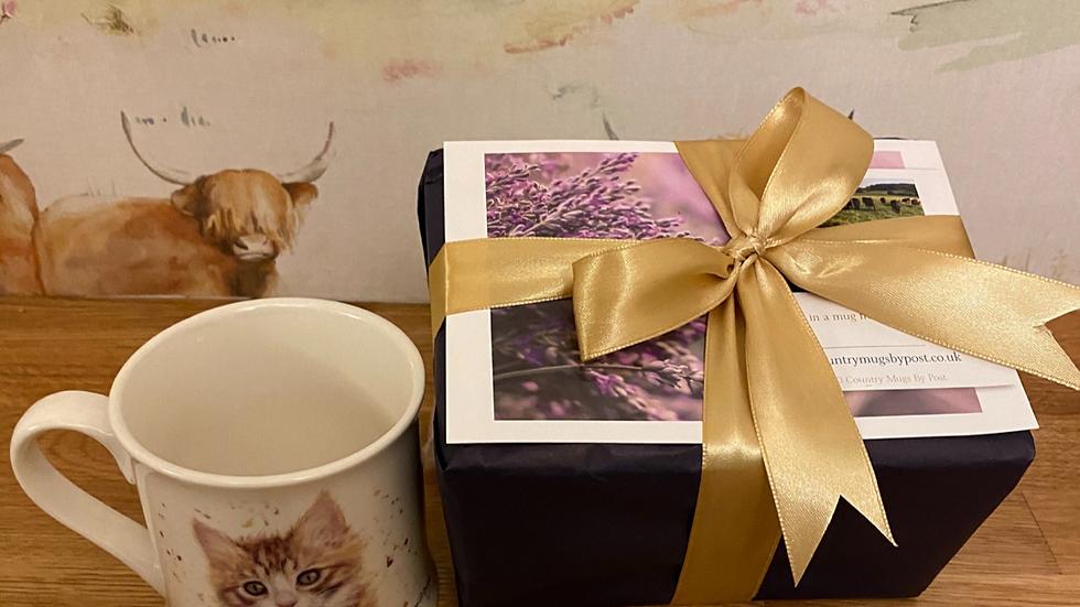 'Nutmeg' Kitten Single Mug Gift