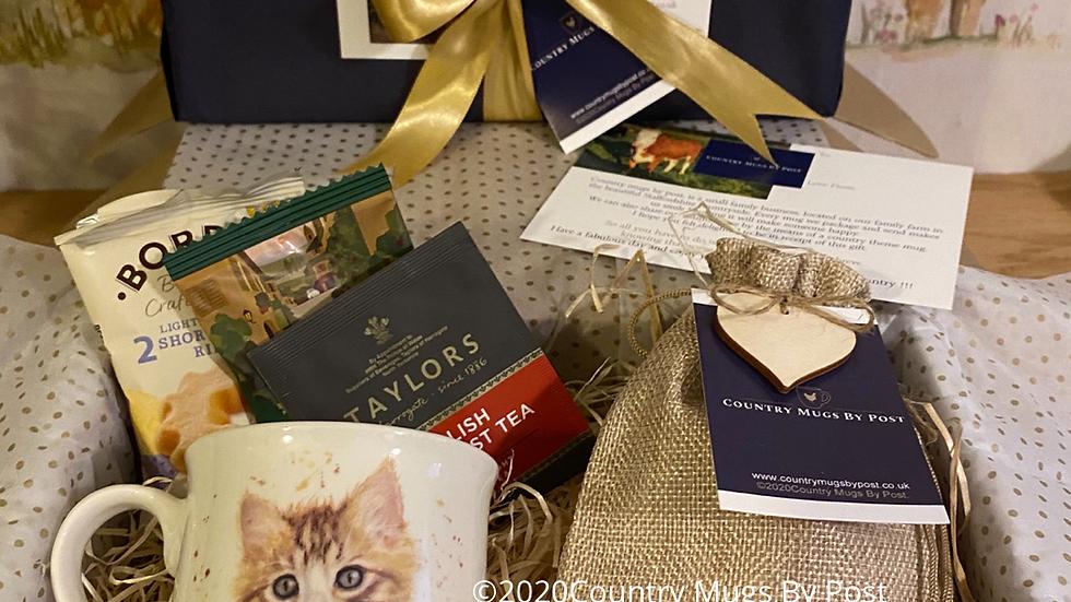 'Kitten' Mug Gift Hamper