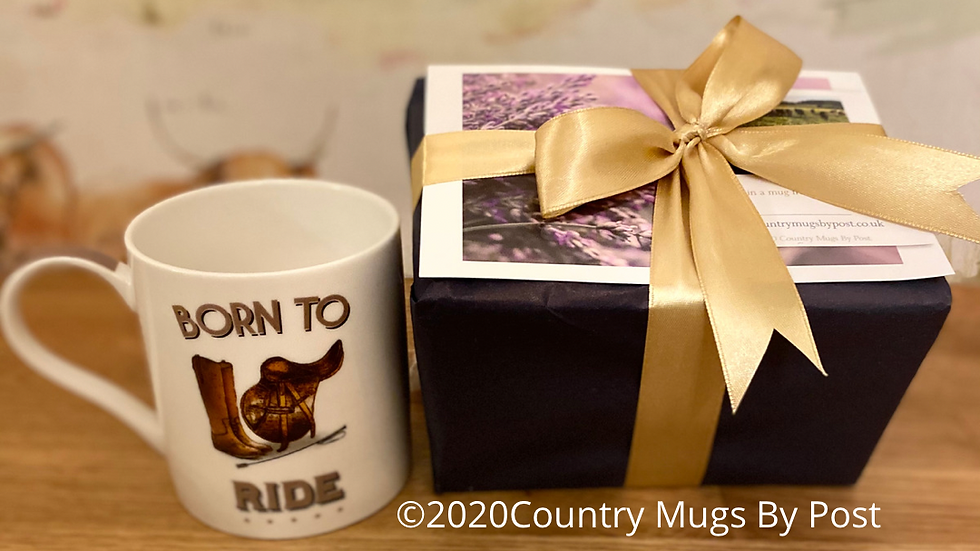 'Born to ride' Single Mug Gift