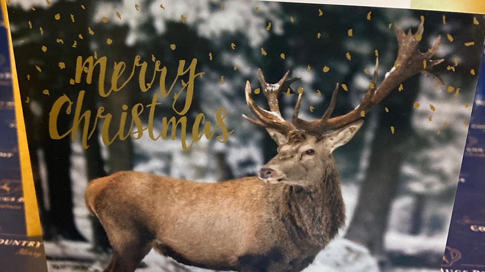 Individual Christmas Card