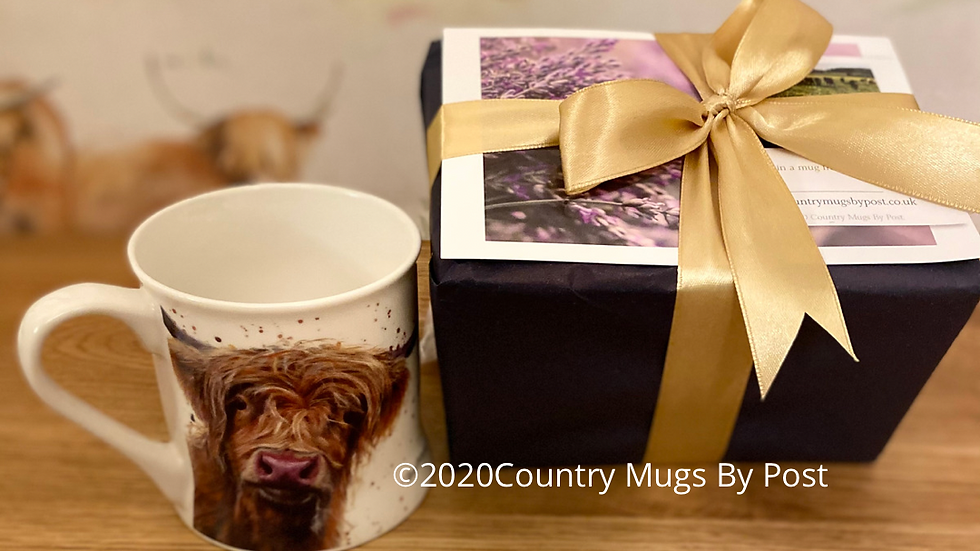 'Betsy Cow' Single Mug Gift