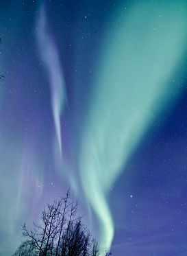 Alaskan Northern Lights.jpg