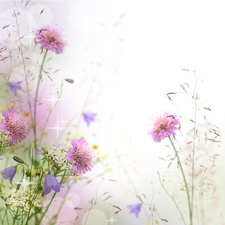 Beautiful pastel floral border beautiful