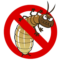 How you can reduce the risk of Termites invading your home!