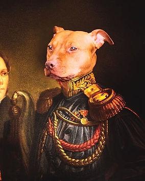 My little general 🐶🐕🌼🍀 #dechouchouke