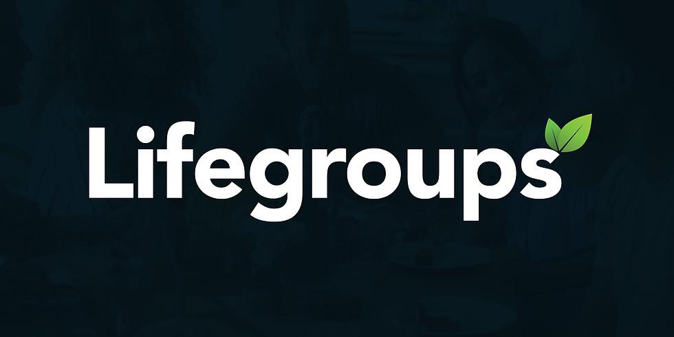 Life Group Fair