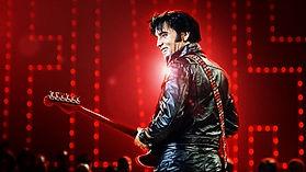 Elvis-3-1014x570.jpg