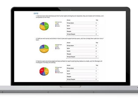 QUIQVIEW: Easy Audits and Surveys