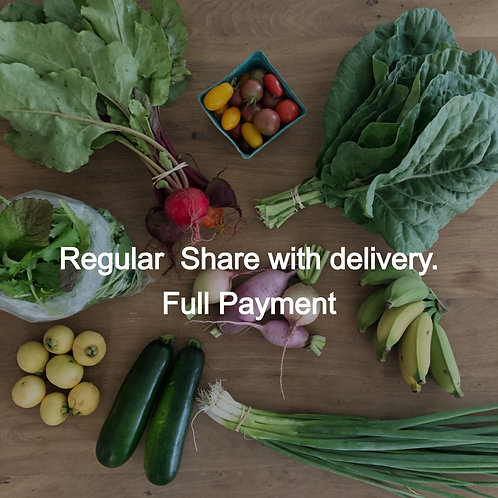 REGULAR CSA SHARE - Delivery (full payment)