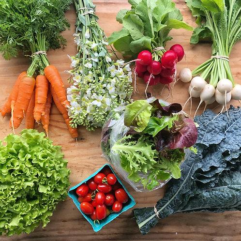 TINY FARM LARGE MIXED VEGGIE BOX
