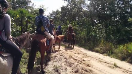 Horseback riding group from Carnival Freedom
