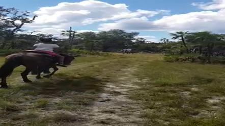 Riding Horseback Belize