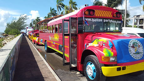 Belize Party Bus