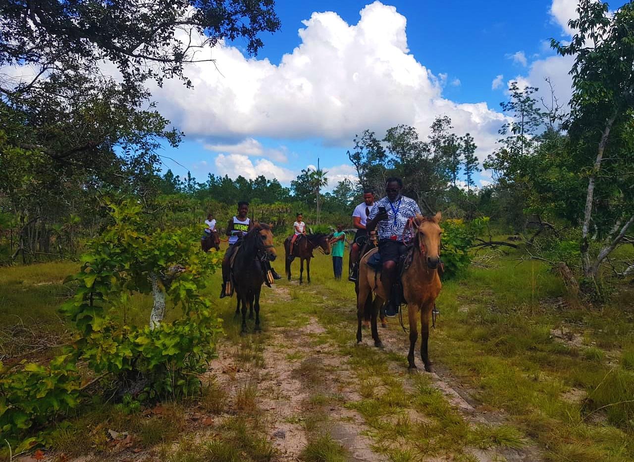 Horseback riding belize.jpg