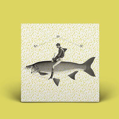 fishrider artwork