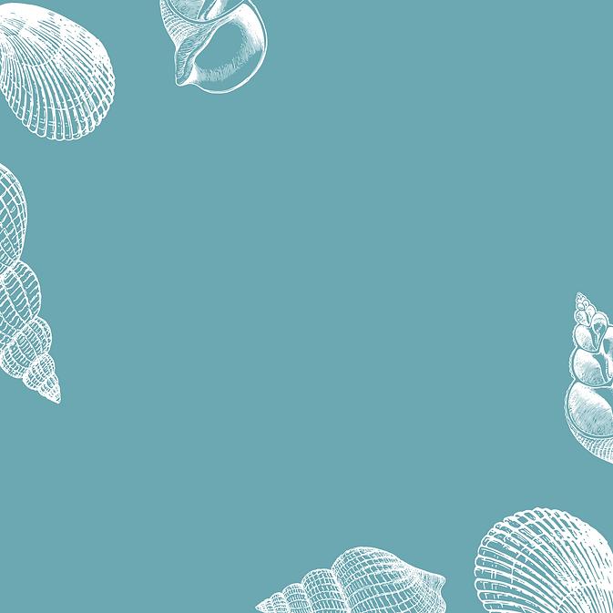 Cream & Blue Shell_NEW