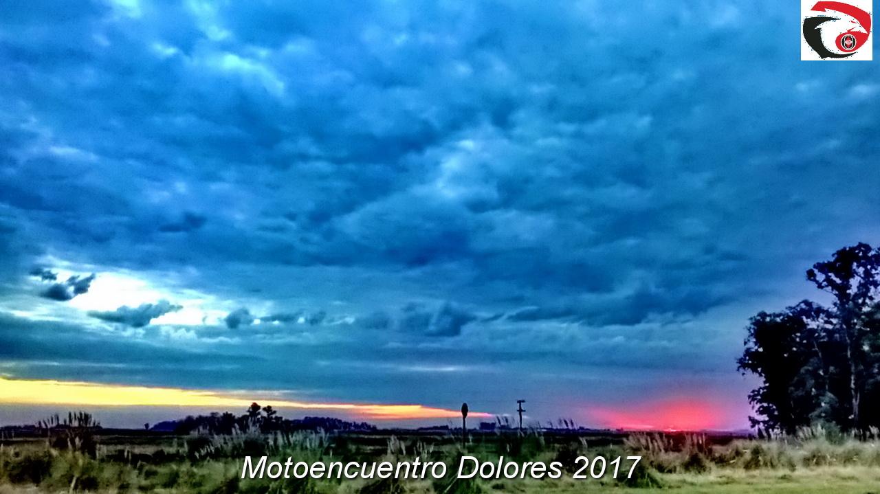 DOLORES 2017  71