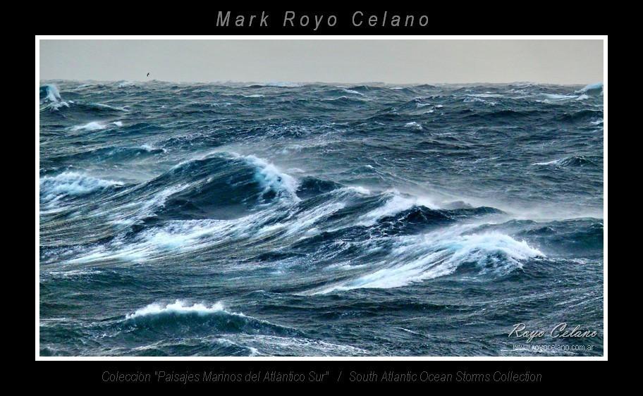 EXPO OCEAN 2013 06 C
