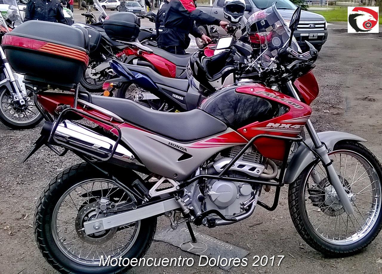 DOLORES 2017  15