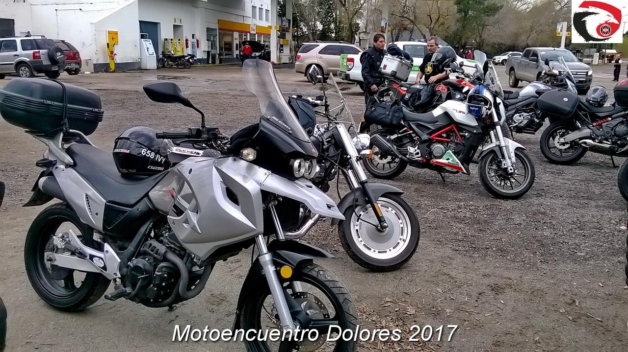 DOLORES 2017  14