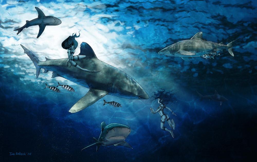 Oceanic Whitips