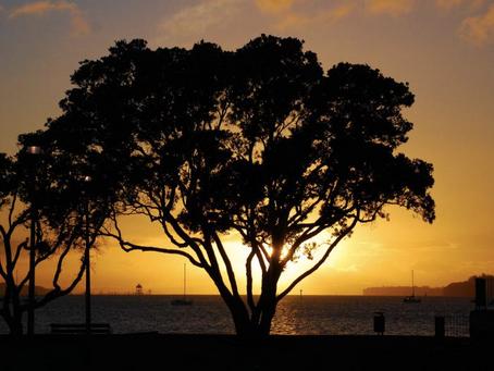 A Sunset off the Coast