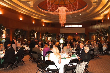 Delta Symphony Orchestra's Annual Fundraising Gala