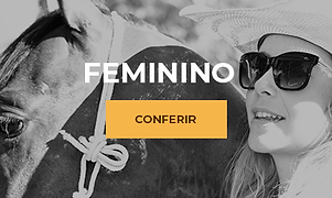 Minibanners mulher.png