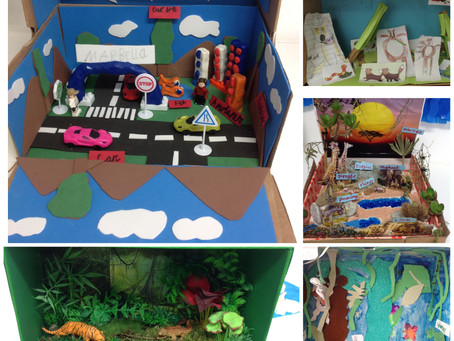Shoebox Habitats