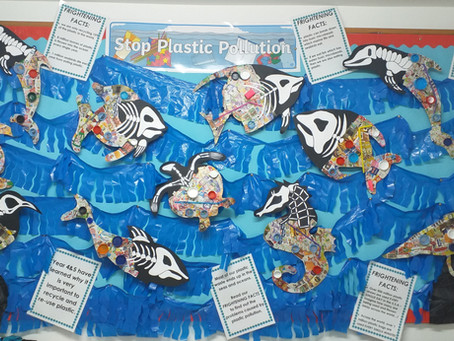 Plastic Pollution Problem