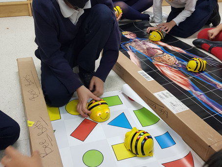Busy Bee Bots