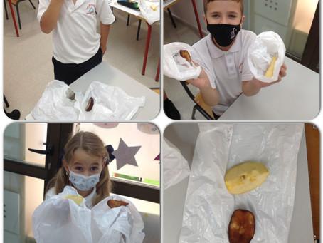 Mummification Madness Part 2