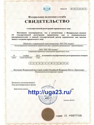 Свидетельство о государственной регистрации, ОГРН