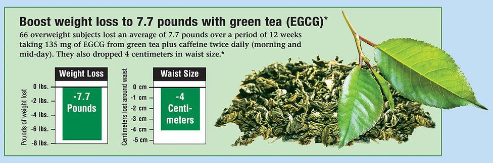Green-chart.jpg