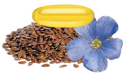 Flax-Seed-Oil.jpg
