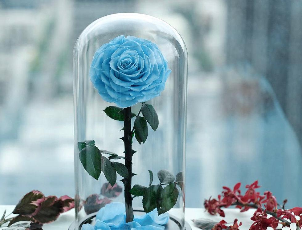 Everlasting Blue Rose Dome | 200 AUD