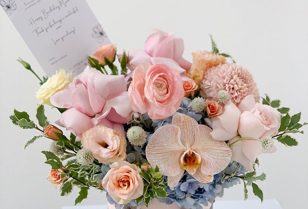 Premium Pastel Baby Blooms | 65 AUD