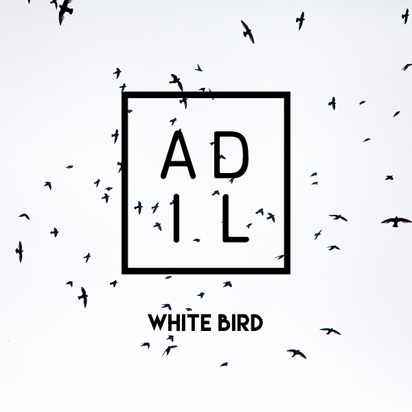 White bird.png