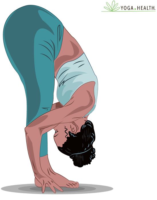 bend forward to touch the floor, keep knees bent but not too much