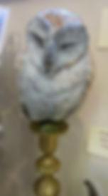 Richard B owl on a candle stick.jpg
