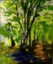 dark woodland.jpg