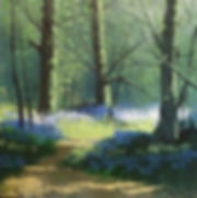 terry wood bluebell 2.jpg