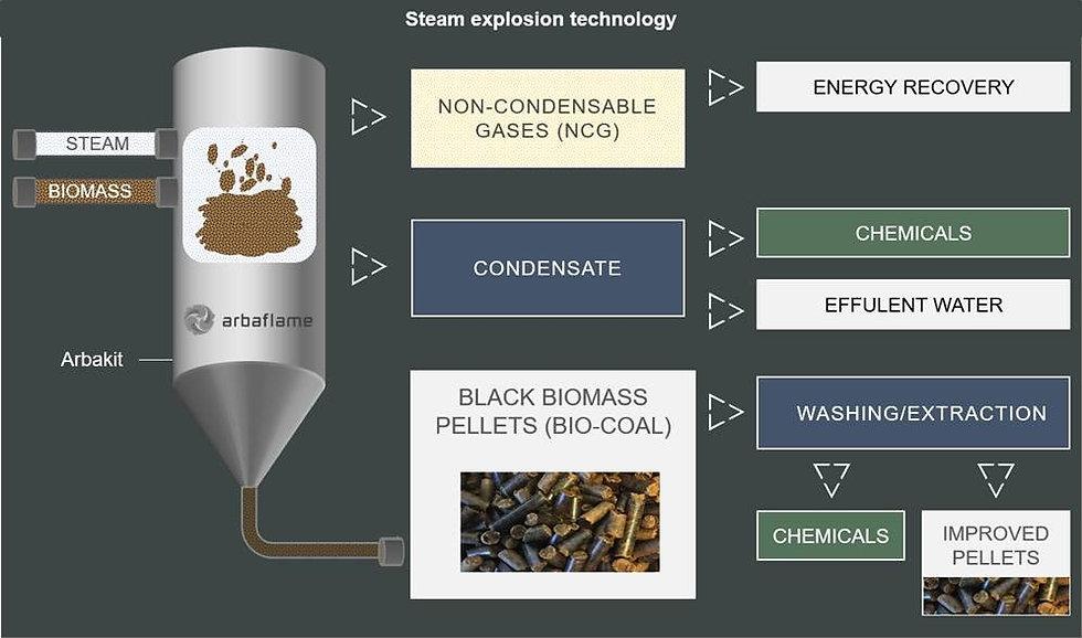 steam explosion technology_Arbaflame.jpg