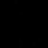 DI_SG (black).png