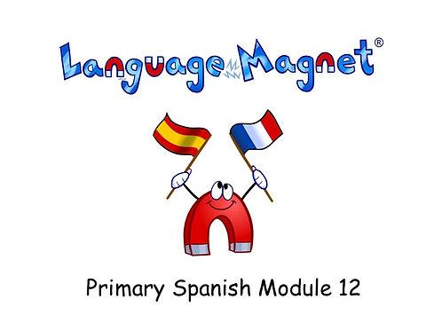Language Magnet Primary Spanish Module 12