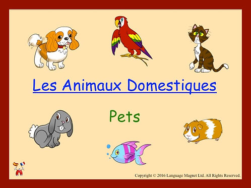 French Pets Presentation, Audio Sheet and Bingo Game