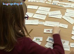 Language Magnet sentence building cards