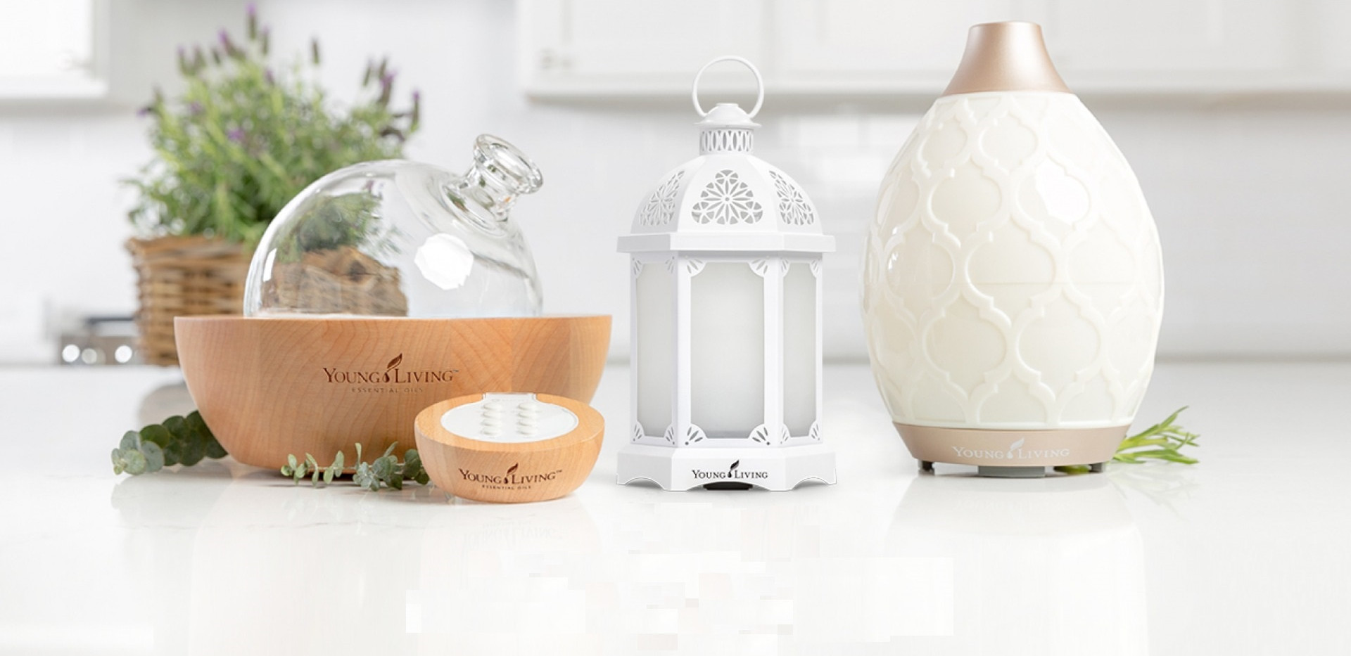 blog-How-to-take-care-of-your-diffuser-P
