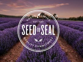 Najwyższa jakość olejków eterycznych - proces Seed to Seal®