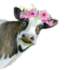 DaisyMaefinal-01.png